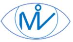 MPEG Immersive video (MIV)